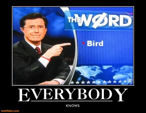 everybody-knows-bird-is-the-word-demotivational-posters-1297968965